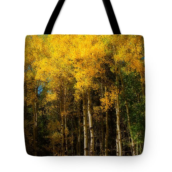 Rocky Mountain Aspen Color Tote Bag by James BO  Insogna