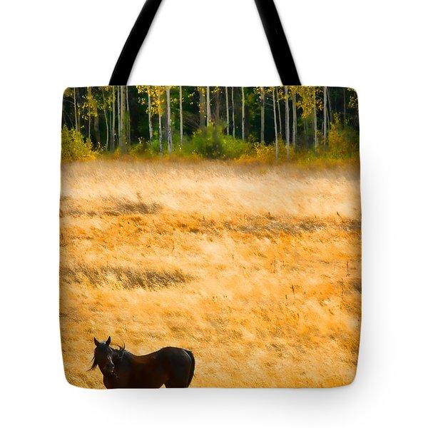 Rocky Mountain Autumn Graze Tote Bag by James BO  Insogna