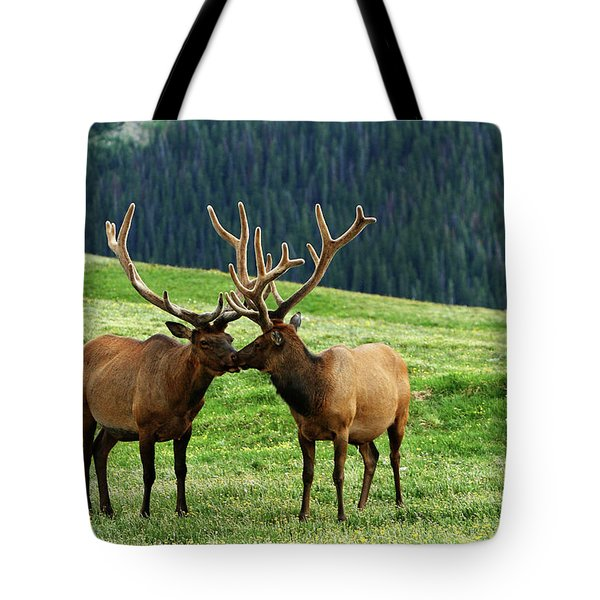 Tote Bag featuring the photograph Rocky Mountain Elk 2 by Marie Leslie
