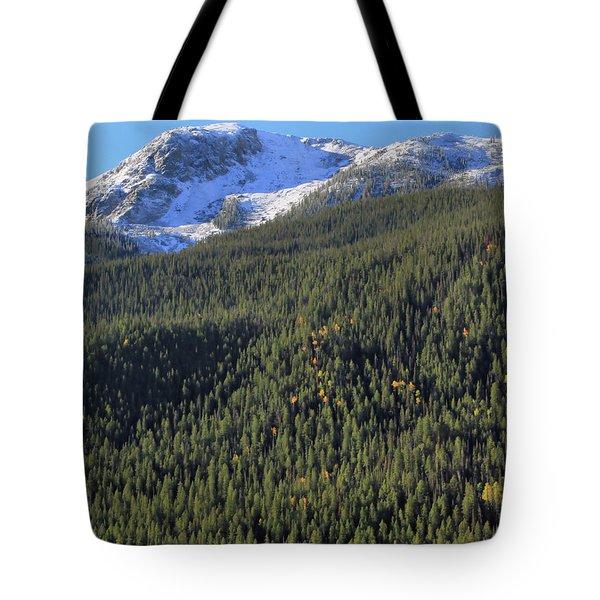 Rocky Mountain Evergreen Landscape Tote Bag