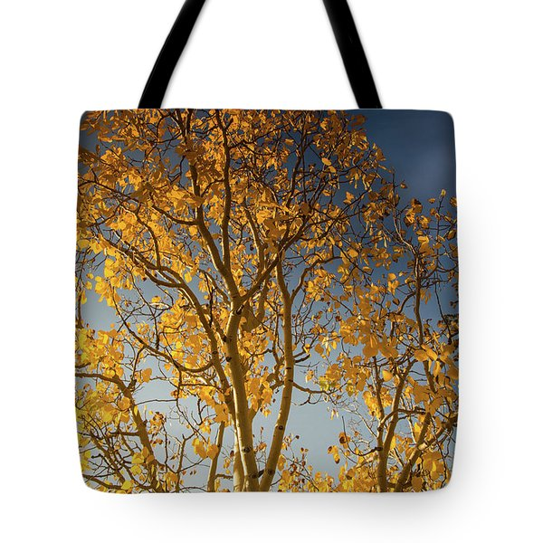 Rocky Mountain Fall Colors Tote Bag