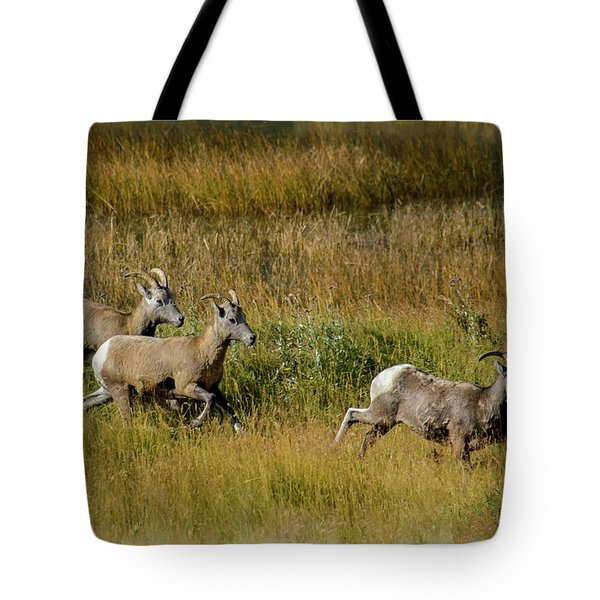 Rocky Mountain Goats 7410 Tote Bag