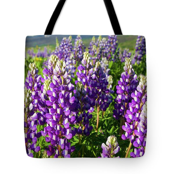 Rocky Mountain Lupines  Tote Bag