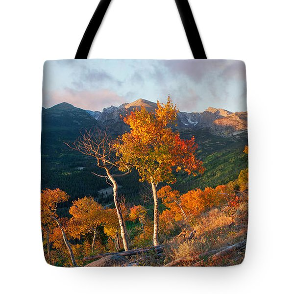 Tote Bag featuring the photograph Rocky Mountain National Park Autumn by Aaron Spong