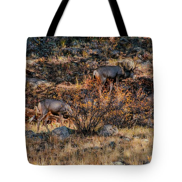 Rocky Mountain National Park Deer Colorado Tote Bag