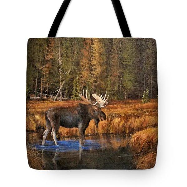 Rocky Mountain Wading Pool Tote Bag