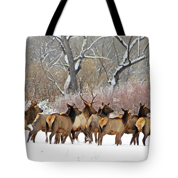 Rocky Mountain Winter Elk Tote Bag