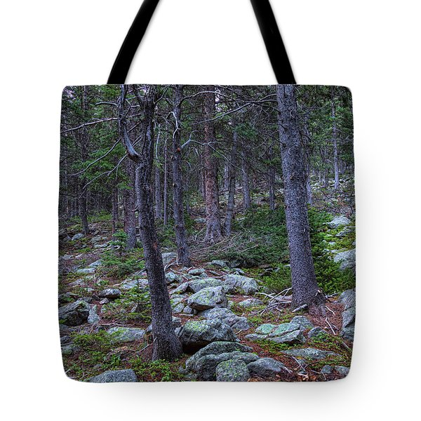 Tote Bag featuring the photograph Rocky Nature Landscape by James BO Insogna