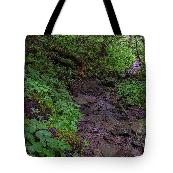 Rocky Path Tote Bag