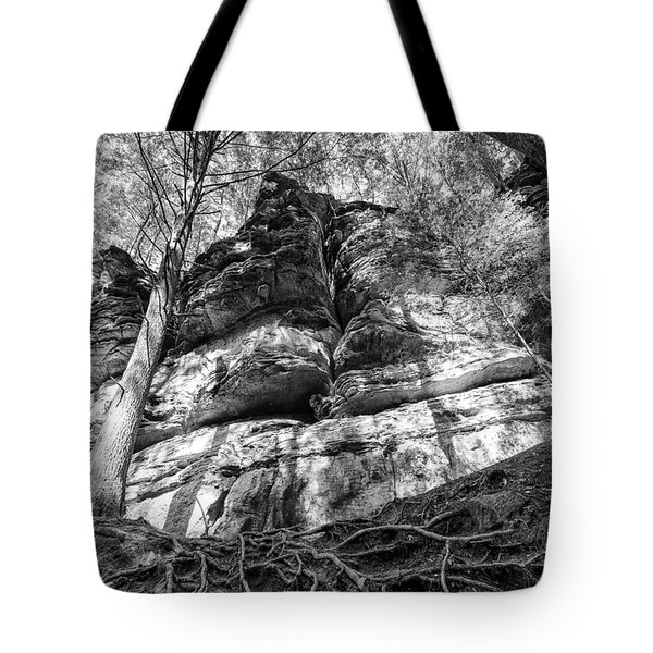 Rocky Roots Tote Bag