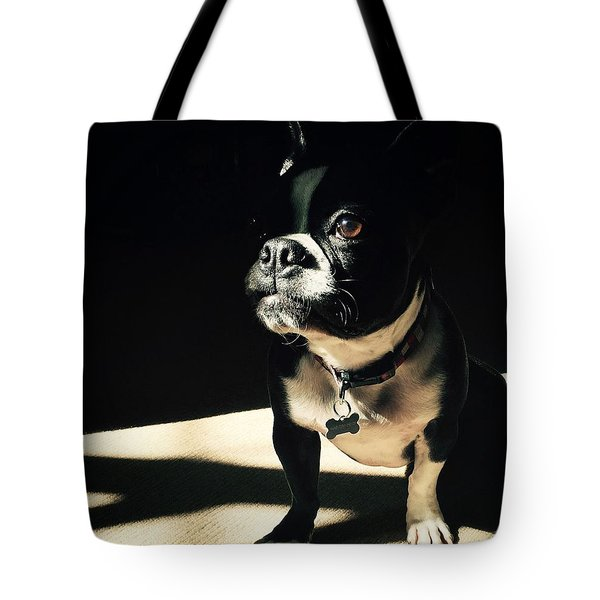 Rocky Tote Bag by Sharon Jones