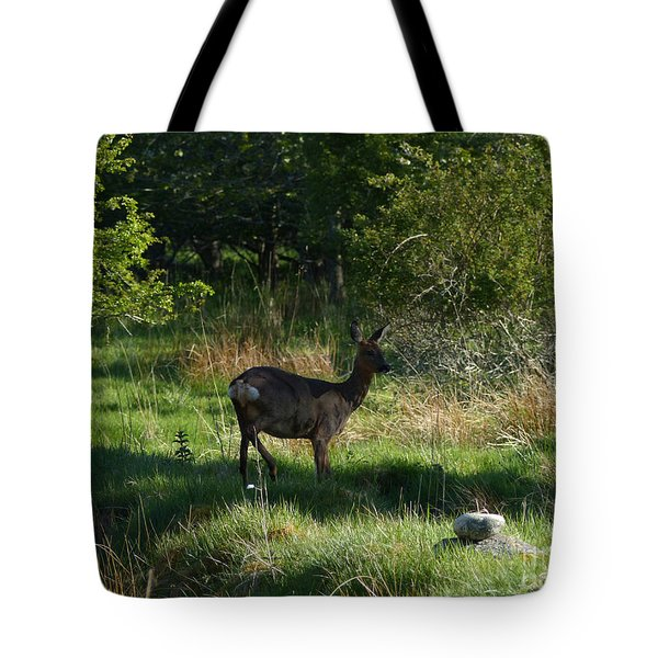 Tote Bag featuring the photograph Roe Doe In Shadow by Phil Banks