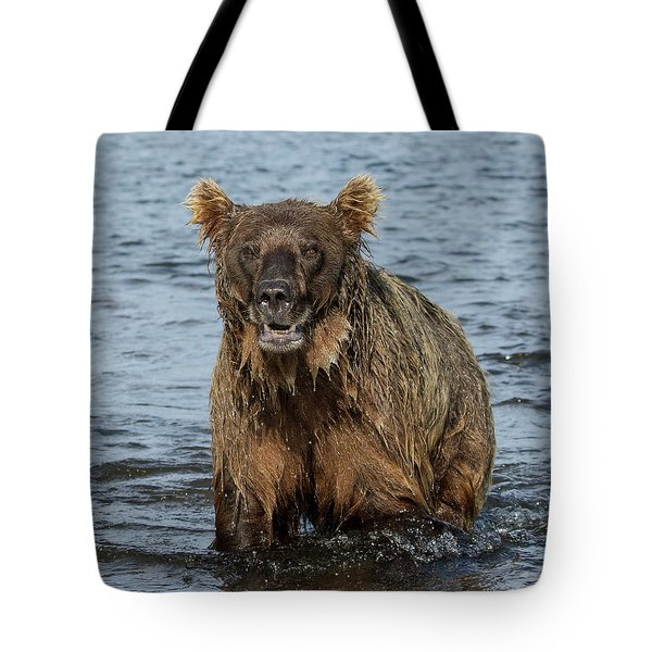 Tote Bag featuring the photograph Rogue Bear  by Cheryl Strahl