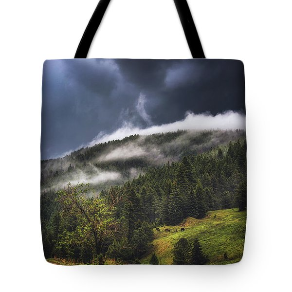 Tote Bag featuring the photograph Rolling Through The Trees by Jason Roberts
