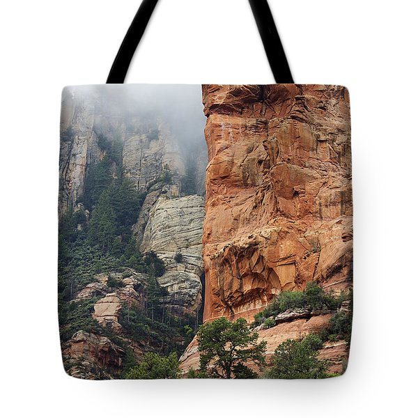Tote Bag featuring the photograph Rollings Mists by Phyllis Denton