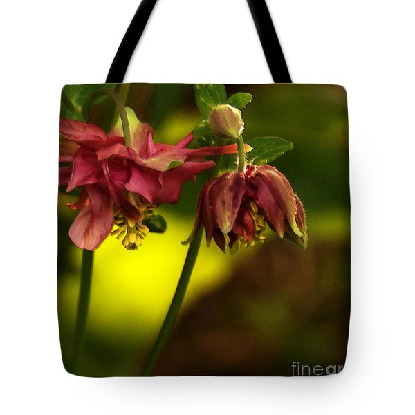 Tote Bag featuring the photograph Romance Through Time - 2 by Linda Shafer