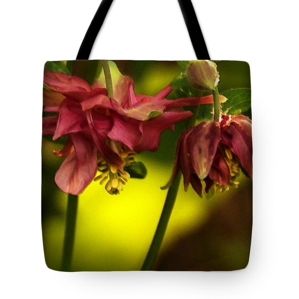Tote Bag featuring the photograph Romance Through Time - 3 by Linda Shafer