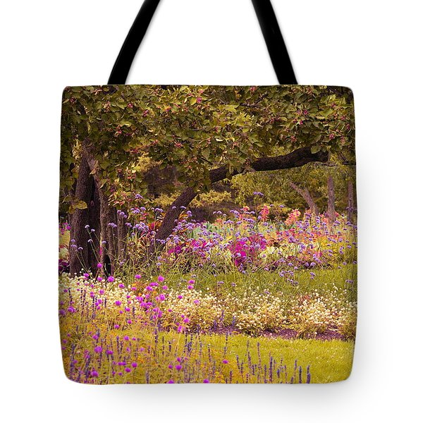 Romanesquerie Tote Bag by Aimelle
