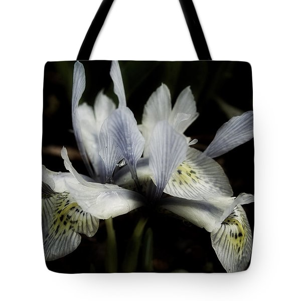 Tote Bag featuring the photograph Romantic Dwarf Iris by Richard Cummings
