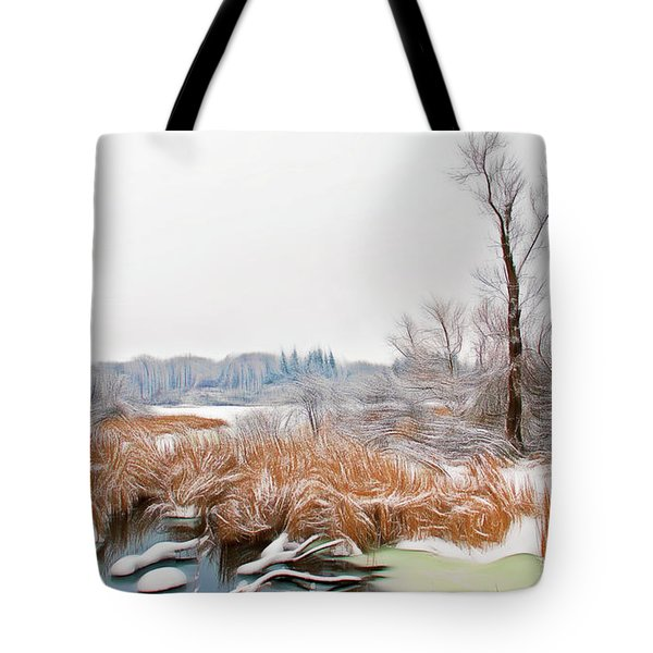 Tote Bag featuring the photograph Romantic Skies Winters Glory by Aimee L Maher Photography and Art Visit ALMGallerydotcom