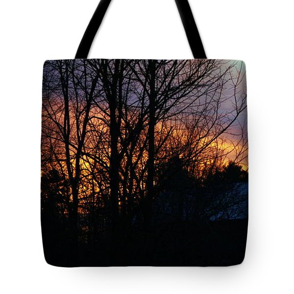 Tote Bag featuring the photograph Roof Sunset by Pat Purdy