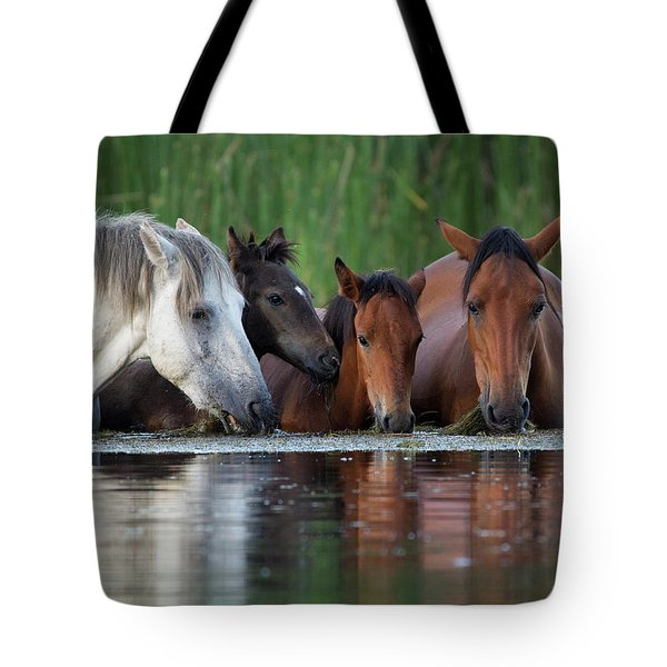 Room For All Tote Bag