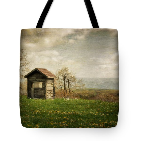 Room With A View Tote Bag by Lois Bryan