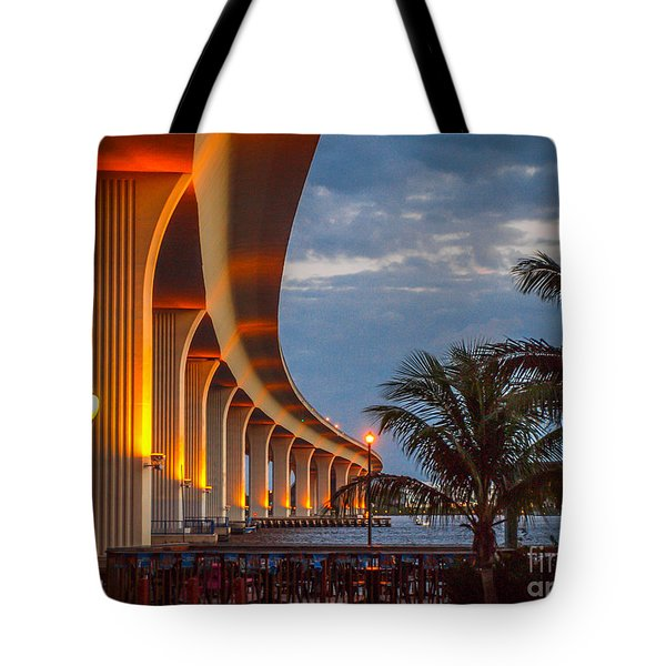 Roosevelt At First Light Tote Bag
