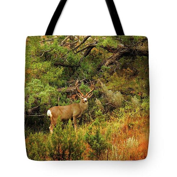 Roosevelt Deer Tote Bag