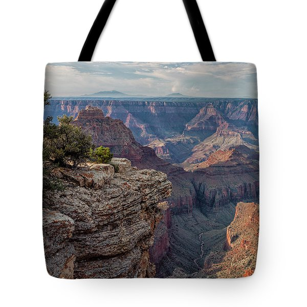 Canyon Below Tote Bag