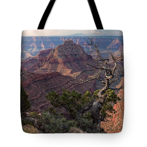 Vishnu Temple Tote Bag