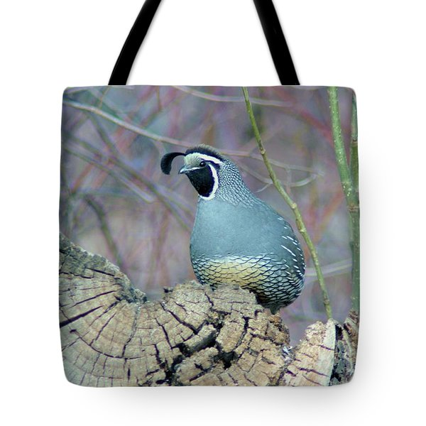 Rooster Quail  Tote Bag by Jeff Swan