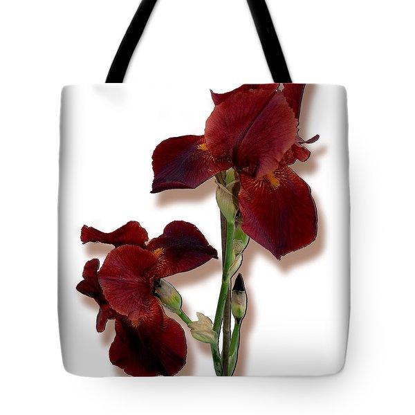 Root Beer Irises Tote Bag by Tara Hutton