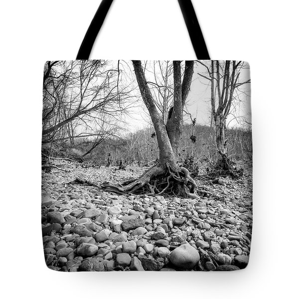 Tote Bag featuring the photograph Roots And Stones by Alan Raasch