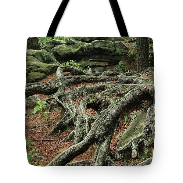 Roots On The Forest Floor Tote Bag