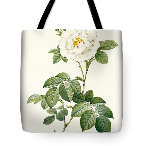 Rosa Alba Flore Pleno Tote Bag