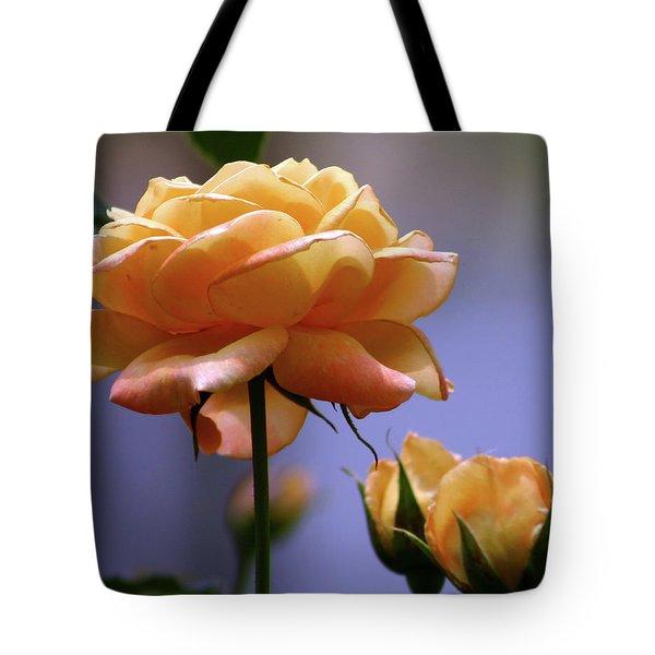 Rose 1156 H_2 Tote Bag