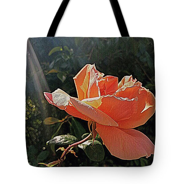 Tote Bag featuring the photograph Rose And Rays by Suzy Piatt