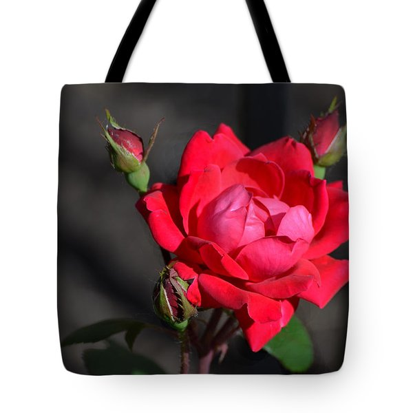 Rose And Shadows Tote Bag