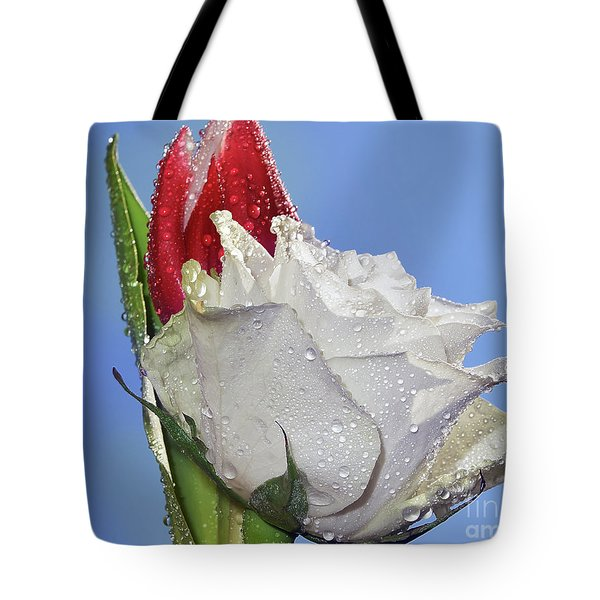 Tote Bag featuring the photograph Rose And Tulip by Elvira Ladocki