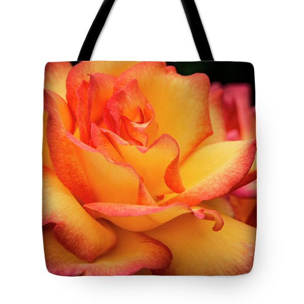 Tote Bag featuring the photograph Rose Beauty by Jean Noren