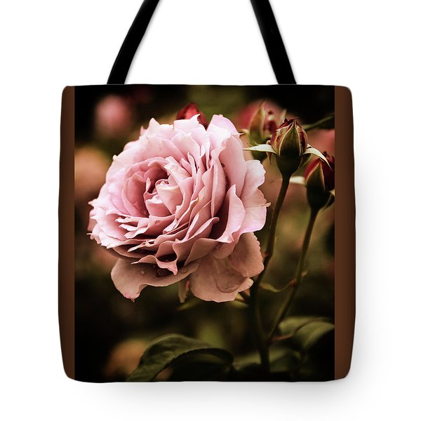 Rose Blooms At Dusk Tote Bag by Jessica Jenney