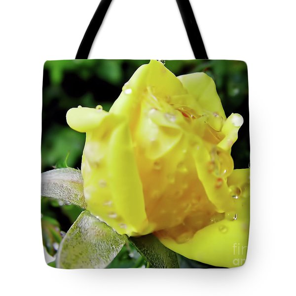 Rose Bud Dew Drops Tote Bag