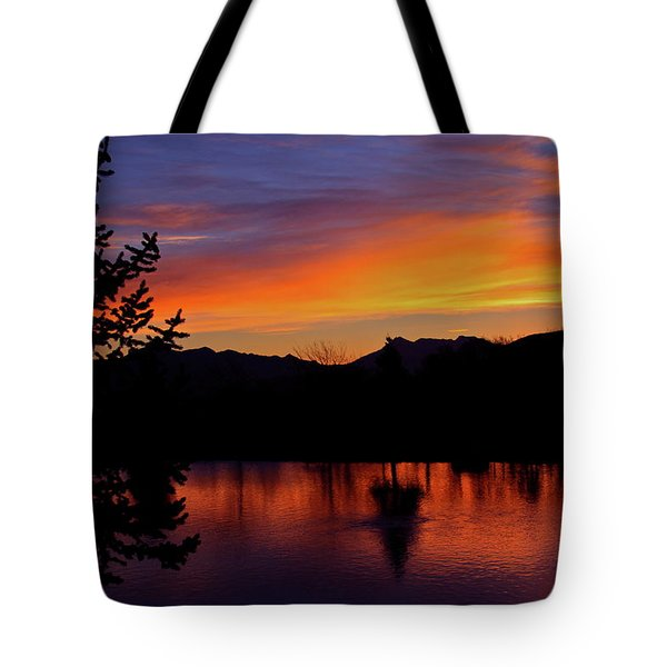 Rose Canyon Morning Tote Bag