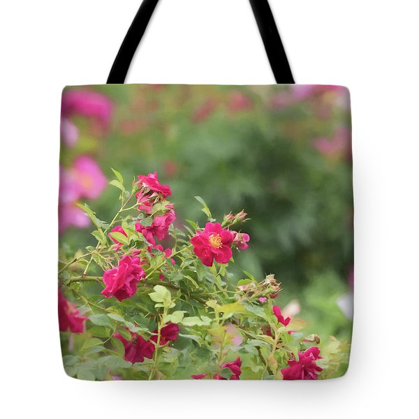 Tote Bag featuring the photograph Rose Garden Promise by Kim Hojnacki
