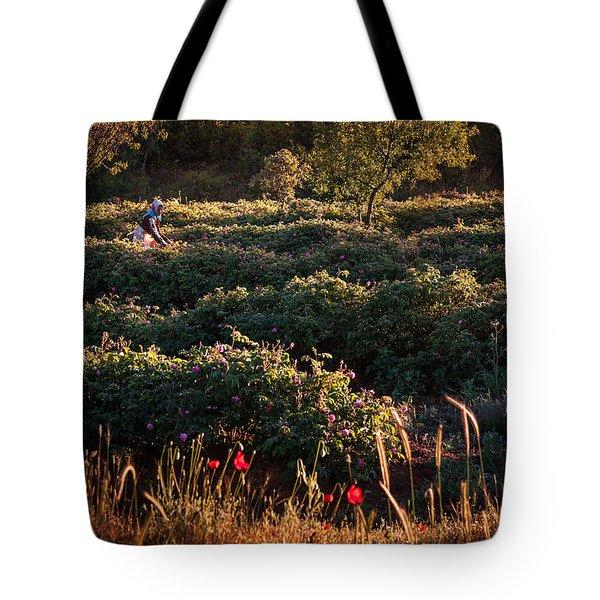 Rose Harvest Tote Bag