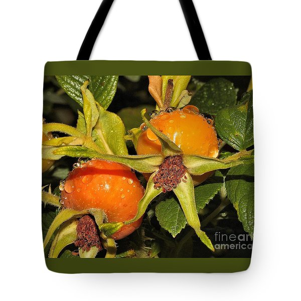 Tote Bag featuring the photograph Rose Hips by Debbie Stahre
