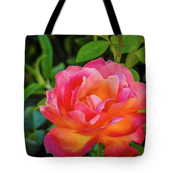 Rose In The Evening Tote Bag