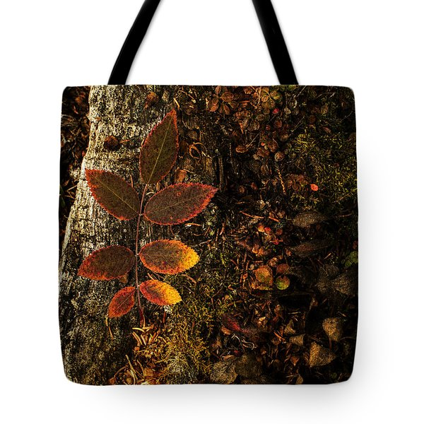 Rose Leaf And The Forest Floor Tote Bag