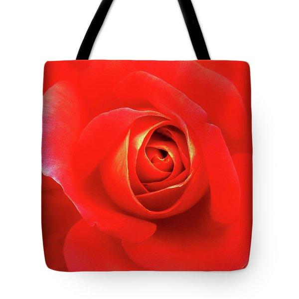 Rose Tote Bag by Mary Ellen Frazee